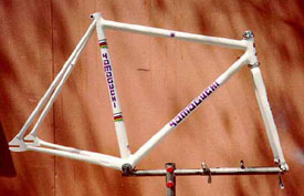 Team USA Track Frame